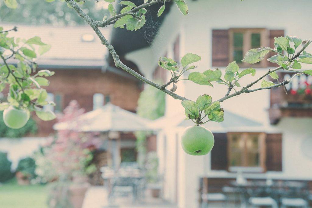 Der Lederer Hof Tegernsee - Garten mit Apfelbaum